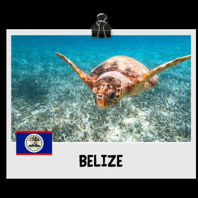 Belize Destination (1)